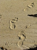 linda footprints